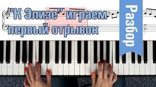 Как сыграть К ЭЛИЗЕ Бетховена НА ФОРТЕПИАНО урок
