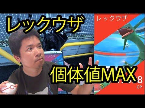 【ポケモンGO】黒レックウザ初日、初日高個体でる説は本当?98、98、個体値MAX!