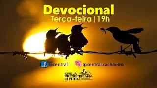 """Devocional: """"Salmo 100"""" - 28 de julho de 2020"""