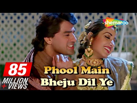 Phool Mai Bheju | Salma Pe Dil Aaga Ya | Ayub Khan | Saadhika | Hindi Song