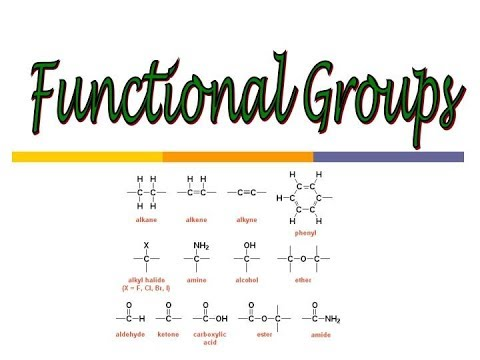 Organic Chemistry Functional Groups Learning ( Easy Way )  :