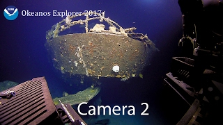 Camera 2: 2017 American Samoa Expedition