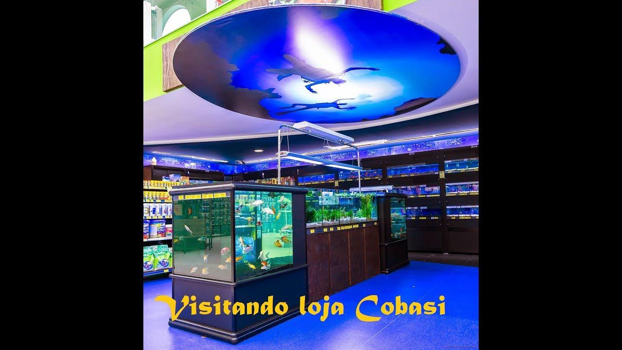 Aquarismo Visita- Loja Cobasi