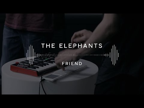 The elephants blue eyes скачать