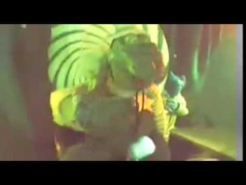Puppetmastaz Zoology