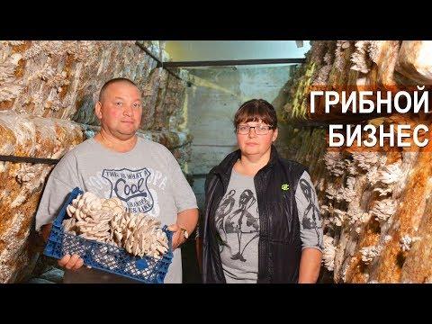 Грибные места в Сочи, где растут грибы в Сочи, где