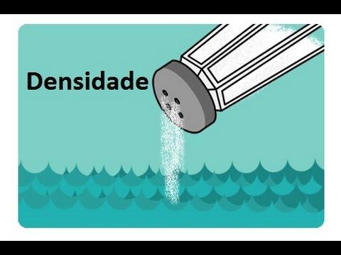 Aquário Marinho - Sem Grana - Densidade p/ Iniciantes