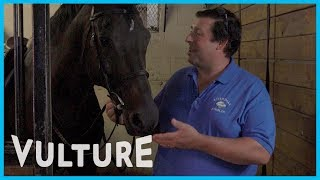 Watch a Horse Expert Review Horse Movies - Expert Witness