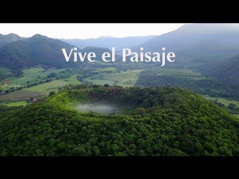 Trailer paisaje biocultural - Dirección: Manfred Meiners