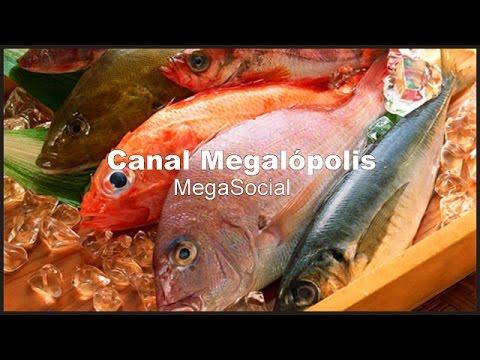 SALUD (La Otra Cara del Pescado)