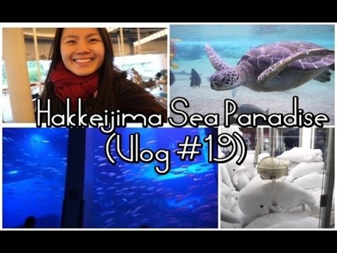 AMUSEMENT PARK/AQUARIUM in JAPAN ~ Hakkeijima Sea Paradise・横浜~八景島シーパラダイス (Vlog #19)