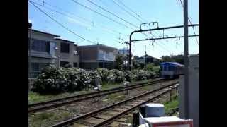 西永福~浜田山の踏切を通過する井の頭線 thumbnail