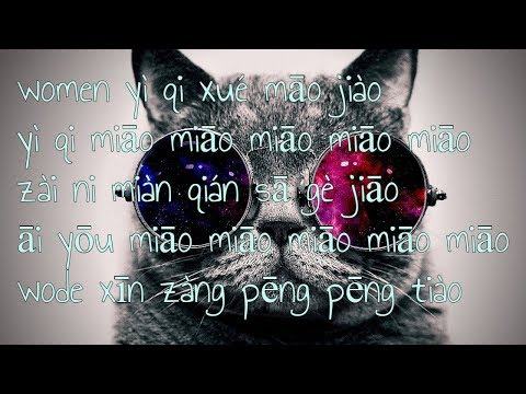 Xiao Feng Feng - Learn To Meow ( Lyrics &  Bass Boosted )