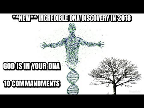 10 Commandments in your DNA  [2018]
