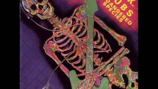 U.K.Subs - Endangered Species -1982