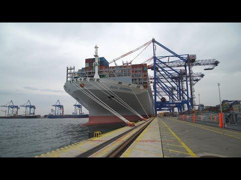 OOCL Scandinavia - piąty największy kontenerowiec świata w DCT