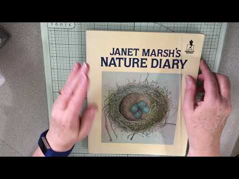 Nature Junk Journal Part #1