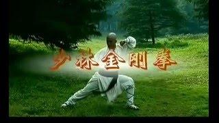 Hướng dẫn học Thiếu Lâm La Hán Quyền và các tuyệt kỹ của Kim Cang Chưởng thumbnail