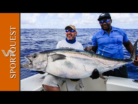 Tuna Big Game Fishing At Rodrigues Island 🎣