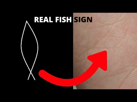 SUCCESSFUL FOREIGN TRAVEL-(REAL FISH SIGN) PALMISTRY
