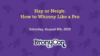 Hay or Neigh: How to Whinny Like a Pro