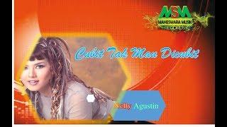 Download lagu Nelly Agustin - Cubit Tak Mau Dicubit [Official Music Video]