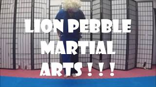 The Beginning of Lion Pebble Martial Arts