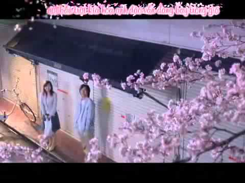 It's great to meet you (Sakura anata ni deaete yokatta) - RSP