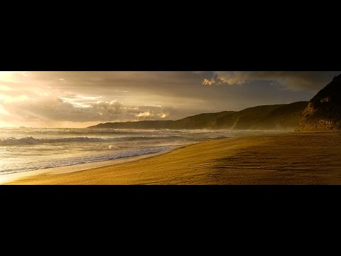 The Karate Kid 1984 (HD) Bill Conti (Japanese Pan Flute) Relaxing Meditation Music
