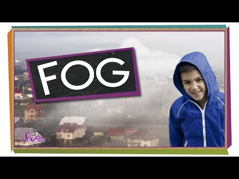 Where Does Fog Come From?  Weather for Kids