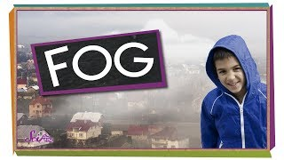 Where Does Fog Come From? | Weather for Kids