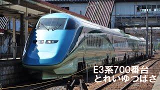 E3系700番台特急「とれいつばさ」(福島駅)