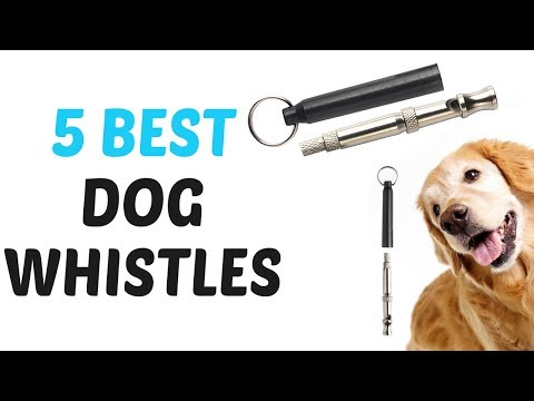 best-dog-whistles-2018---dog-whistles-review