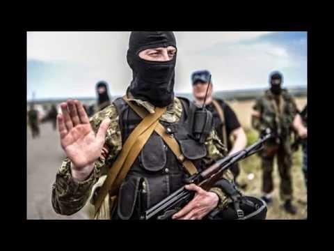 Not terrorists: Hysteria over MH17 fails to take account of both law and facts
