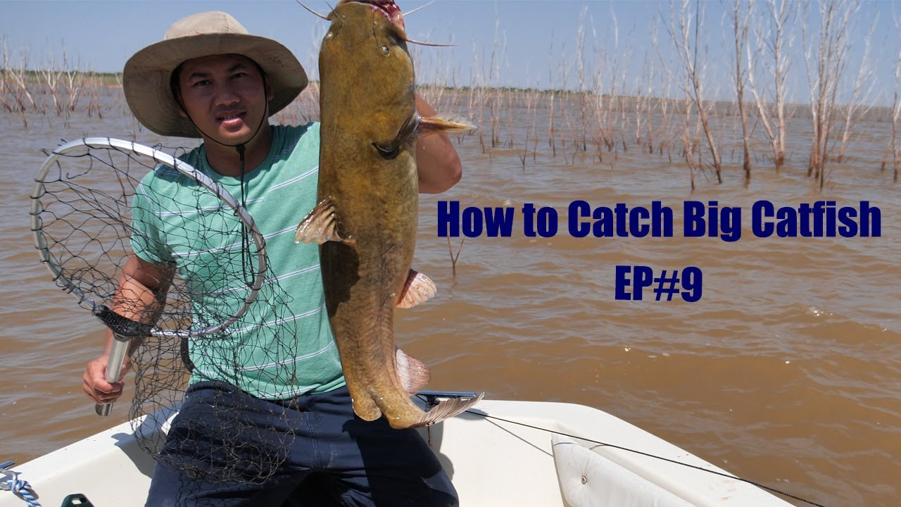 How to Catch Big Catfish on Trot lines EP#9