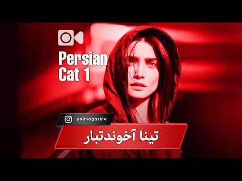 tina akhoondtabar Documentary (persian cat part1)