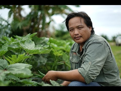A Day in a Life of a Farmer - Johanes Jok