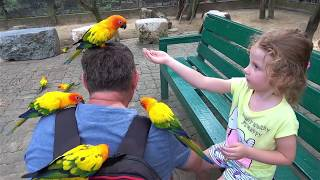 Milusik rides in the zoo and feeds animals