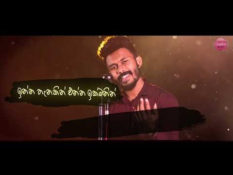Ko Oya (Rosa Mala) Nilan Fernando Official Lyrics Video