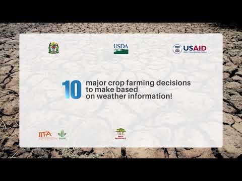 Major 10 farming decisions to make based on weather info | English