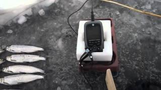 Двопроменевий ехолот JJ-Connect Fisherman 220 Duo Ice Edition Mark II