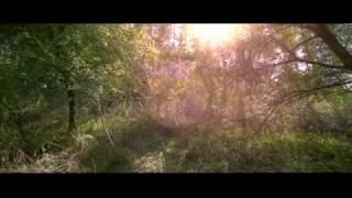"""Antonio Vivaldi - Violin Concerto """"The Four Seasons"""" / Interpreti Veneziani"""