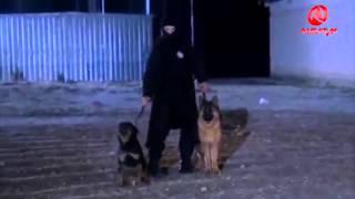 Video Flaka e Maleve Alsat   M   Pjesa kur vdes Kordon Xhelili Titra Shqip download MP3, 3GP, MP4, WEBM, AVI, FLV November 2017