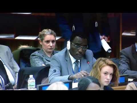 IMG_0191[1].MOV/Chair/African Group / 3rd Cmtte/ Gabon/UN 2018