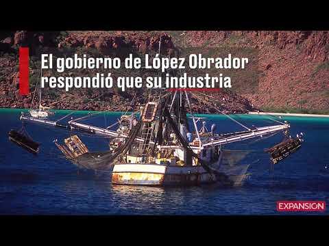 México pierde batalla legalpor el etiquetado de atún
