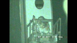 YORI RANCH OWLETS May 31, 2011