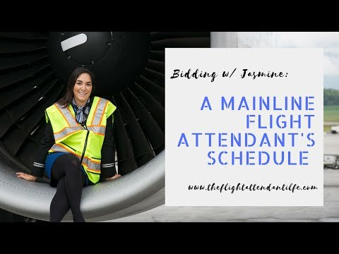 How A Flight Attendant At A Major Airline Chooses A Schedule (INSIGHT Into 'Flight Attendant Life')
