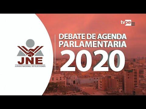 Congreso 2020: Primer Debate De Agenda Parlamentaria 12/1/2020