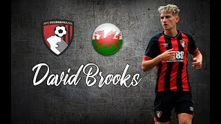 David Brooks ● Skills , Goals , Assists ●│2018 - 2019│►HD