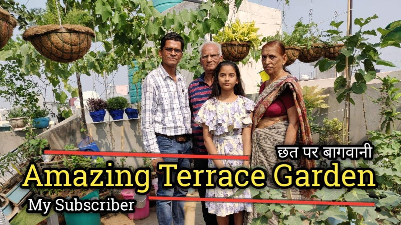 Download Amazing Terrace Indian Gardening | छत पर बागवानी | Vegetable Gardening